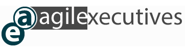 Agile Executives Logo